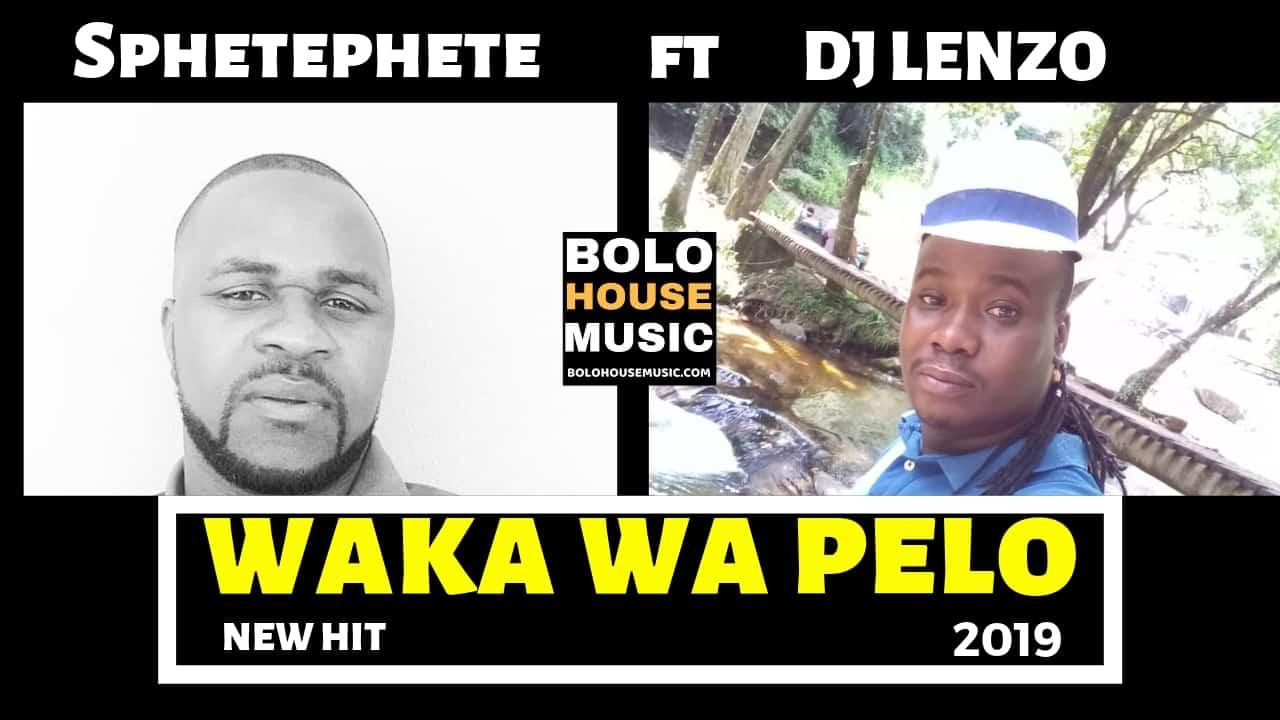 Sphetephete ft DJ Lenzo - Waka Wa Pelo