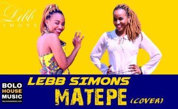 King Monada - Matepe (Lebb Simons Cover 2019)