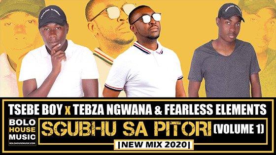 Tsebe Boy x Tebza Ngwana & Fearless Elements - Sgubhu Sa Pitori (Volume 1)