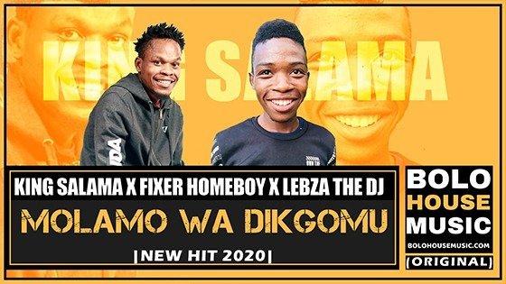 King Salama x Fixer Homeboy x Lebza The DJ - Molamo Wa Dikgomu