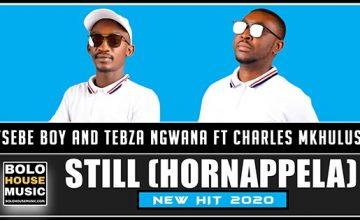 Tsebe Boy x Tebza Ngwana - Still (Hornappela) Feat Charles Mkhulu