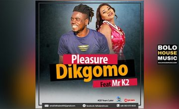 Pleasure - Dikgomo Feat Mr K2