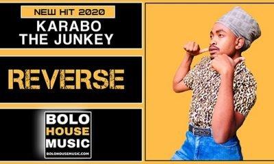 Karabo The Junkey - Reverse