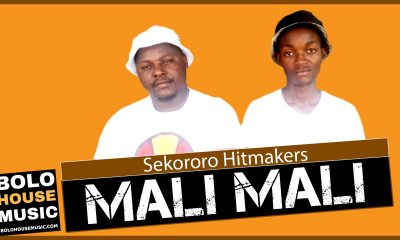 Sekororo Hitmakers - Mali Mali (Fake Love)
