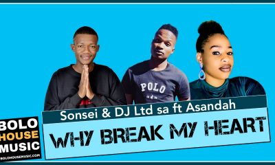 Sonsei - Why Brake my Heart