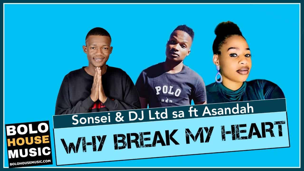Sonsei - Why Brake my Heart